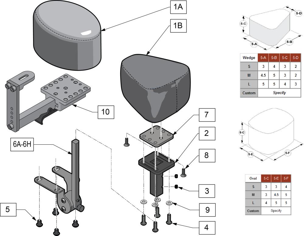 Medial Thigh Abductors parts diagram